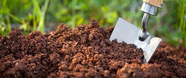 اسید سولفوریک کشاورزی